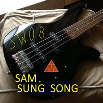 Sam Sung Song by SW08