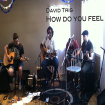 How Do You Feel by David Trig