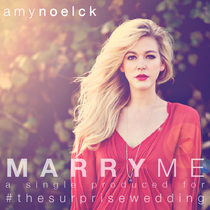 Marry Me by Amy Noelck