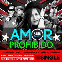 Amor Prohibido (feat. Javier Declara & David Marley) by Manuel2santos