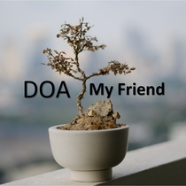 My Friend by DOA