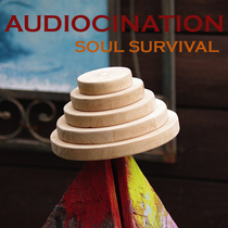 Soul Survival by Audiocination