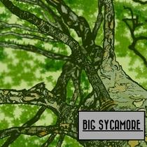 Big Sycamore by Big Sycamore
