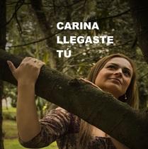 Llegaste Tu by Carina