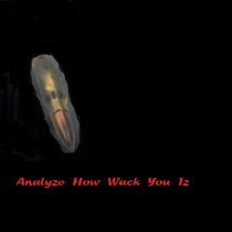 Analyze How Wack You Iz by Fokissed