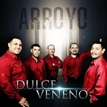 Dulce Veneno by Arroyo