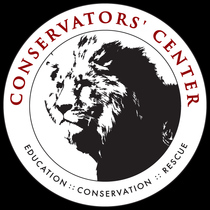 Wowing Jungle Cats at Conservators' Center by Conservators' Center