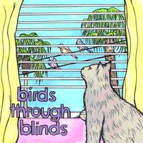 Birds Through Blinds by Birds Through Blinds
