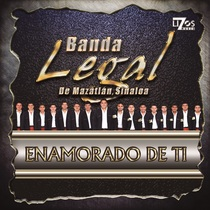 Enamorado de Ti by Banda Legal