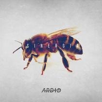 Sinergia by ARDID