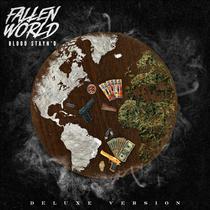 Fallen World (Deluxe Version) by Blood Stayn'D
