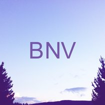 BNV by Brave New Void