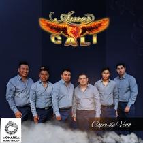 Copa de Vino by Amor Cali