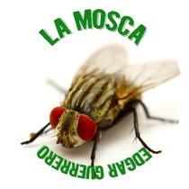 La Mosca by Edgar Guerrero