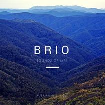 Brio by Aubrianna Nicole