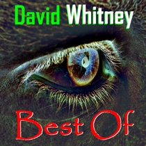 Best of David Whitney by David Whitney and Electrivox