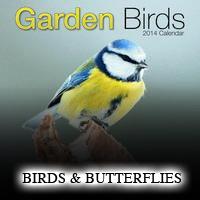 Bird-Butterfly Calendars