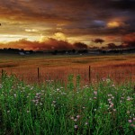 Wv-heavenly-sunset-farm-scene_-_Virginia_-_ForestWander