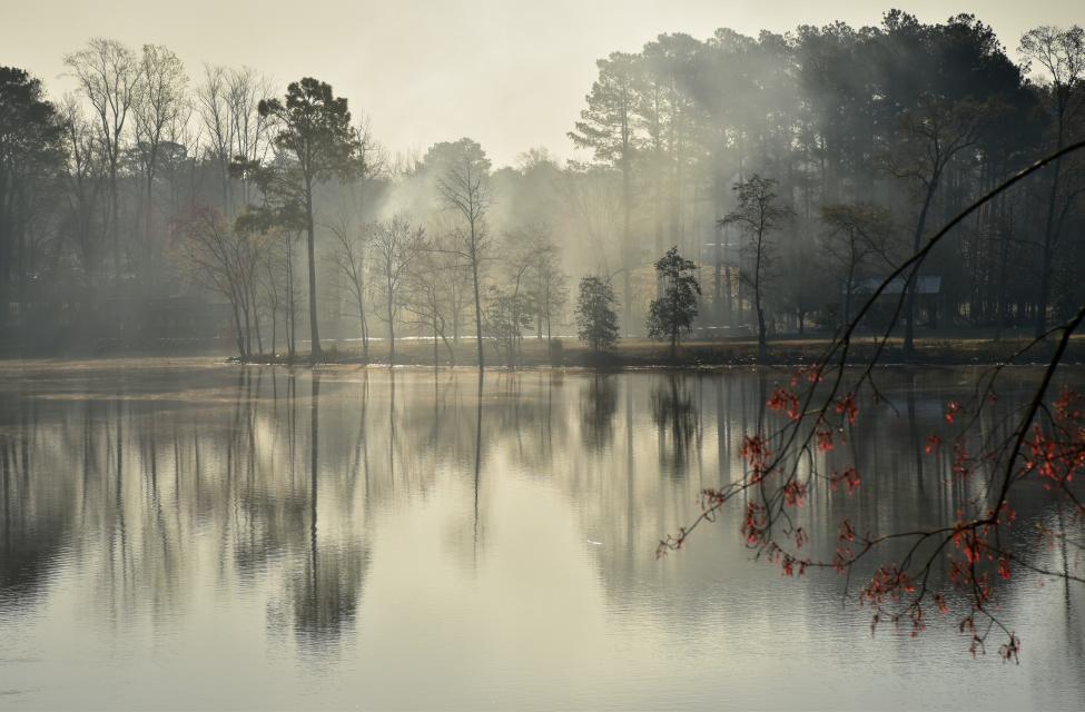 pretty lake scene