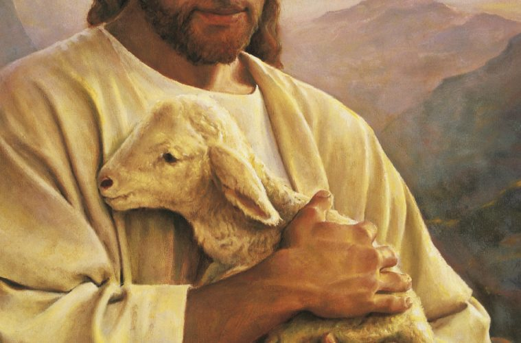 WebQuests: Parable Of The Lost Sheep - Catholic Teacher