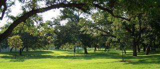 Cameron Park TX