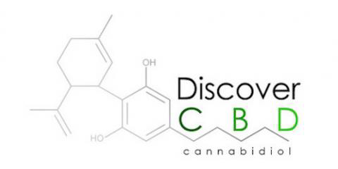 Logo image for CBD Oil Store