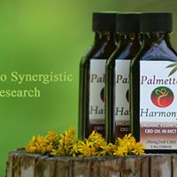Banner image for CBD store: Palmetto Harmony