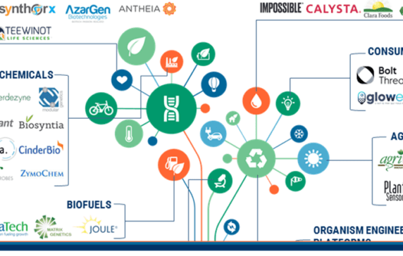 60+ Synthetic Biology Startups Reimagining Food, Fuel, Healthcare, And More