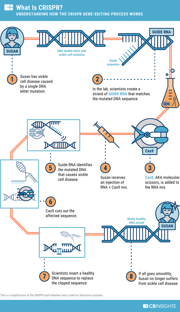 What is CRISPR? Graphic