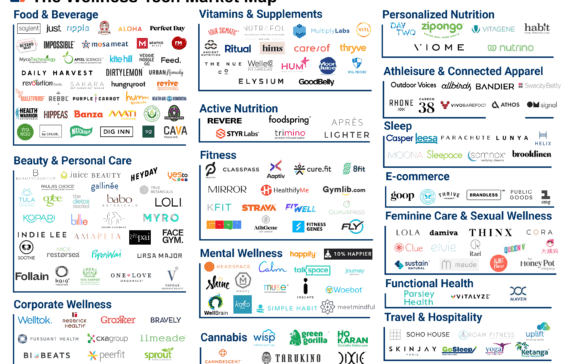 150+ Startups Reshaping The Wellness Industry