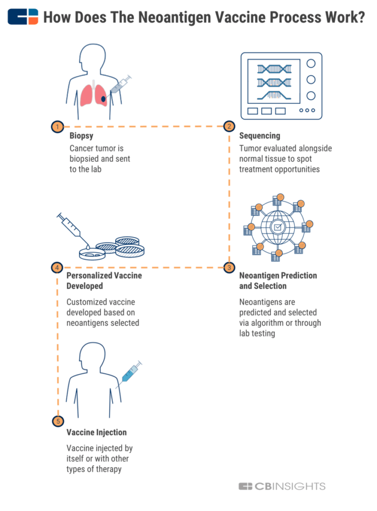 How personalized neoantigen vaccines work infographic