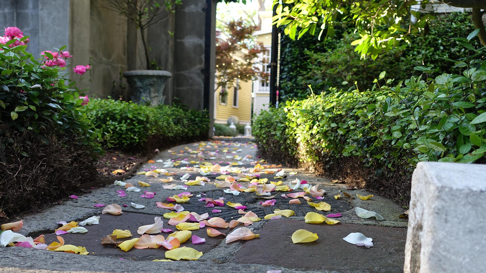 Flower Pedal Path