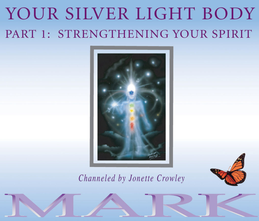 Silver Light Body 1