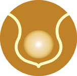 sbf-logo-150x150