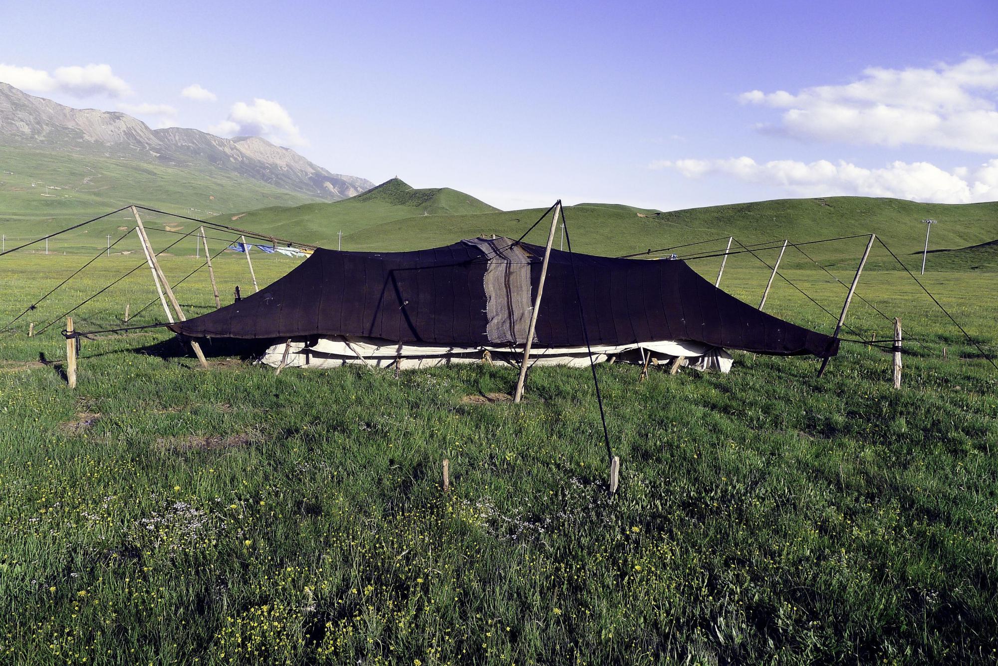 Image of Black Tent