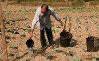 Index_drought_farm_1002_large