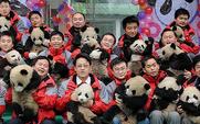 Aside_426_pandas