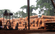 Aside_logging_in_congo