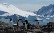 Aside_antarctica