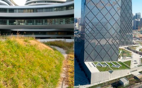 """北京需要一场屋顶绿化""""革命"""""""
