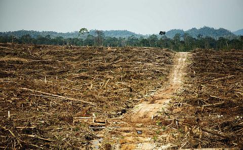 自然资本:避免下一次金融危机的利器