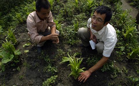 创新型生态工程改善长江污染状况