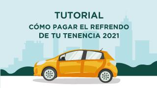 tenencia_tutorial.png