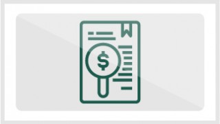 Consulta de pagos y adeudo