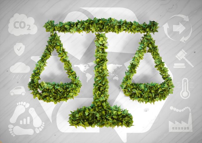 Il giurista ambientale: ecco come districarsi nei meandri del diritto dell'ambiente