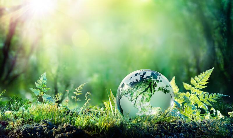 Ambiente, le 8 priorità del Governo per il triennio 2020-2022