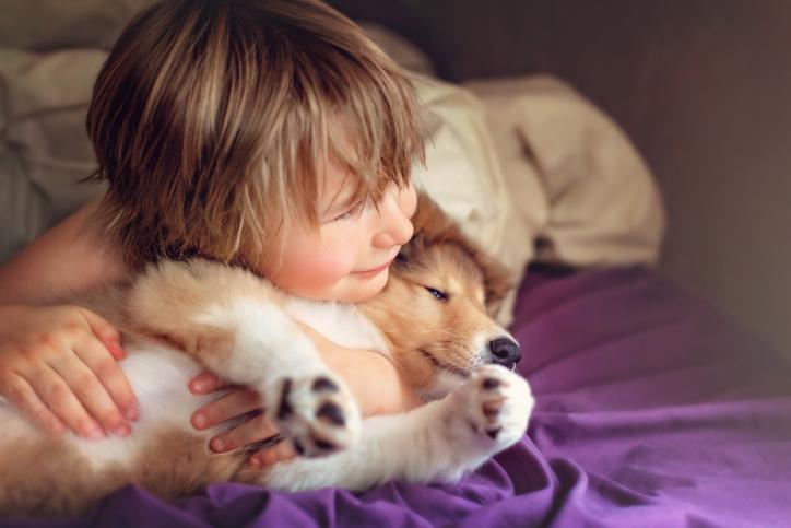 10 raças de cachorro ideais para famílias com crianças 10