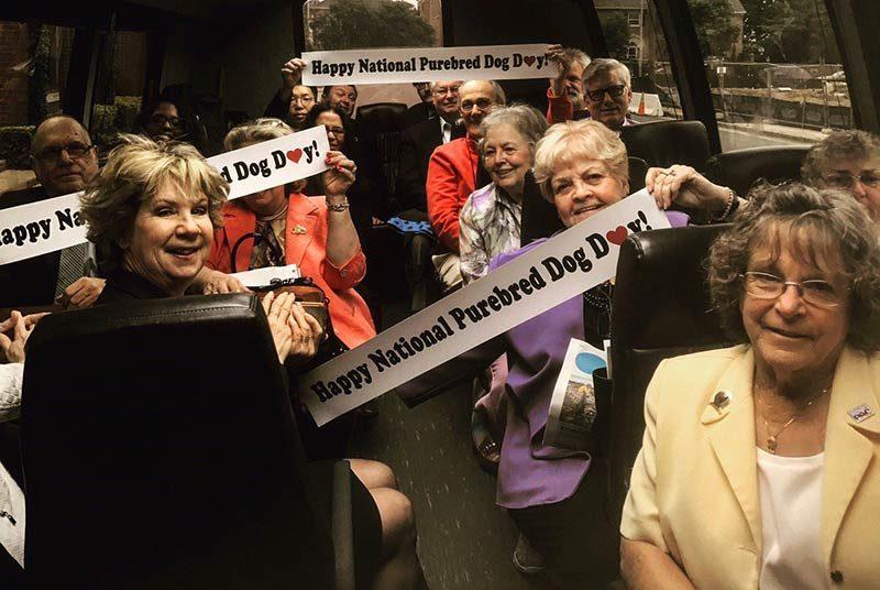 national purebred dog day bus