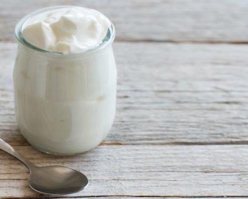 giardia greek yogurt)