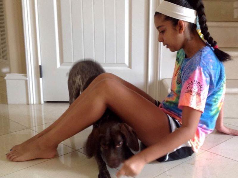 Teach Your Dog a New Trick: Under the Bridge
